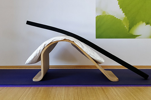 Critical Alignment Yoga 1